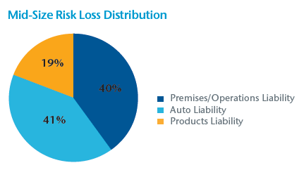 Mid-Size Risk Loss Distribution